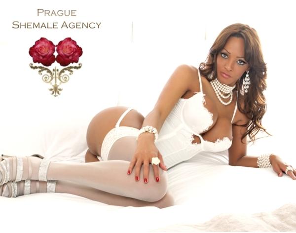 Prague prostitutes shemale #6